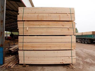 铁杉集成板材