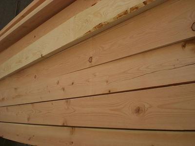花旗松建筑木材